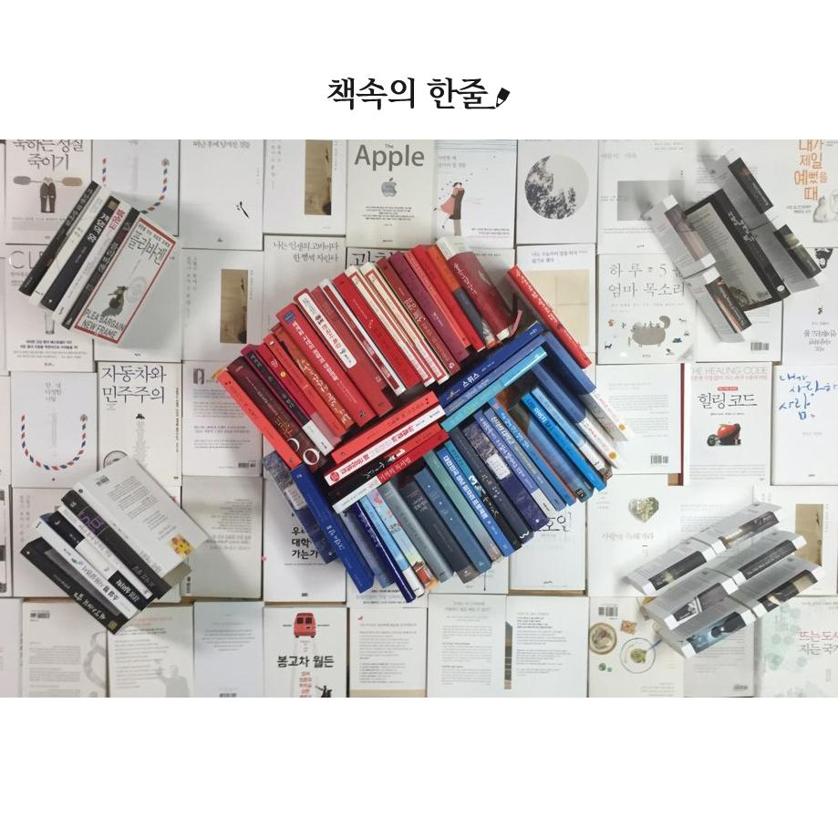 책속의-한줄-태극기1