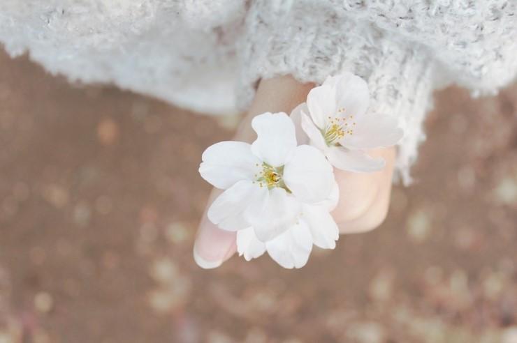 spring-632098_960_720